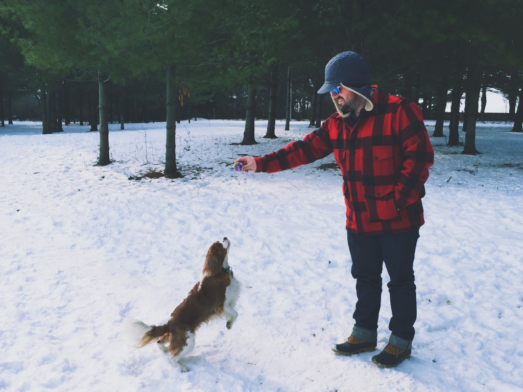 Lumbersexual man training his dog