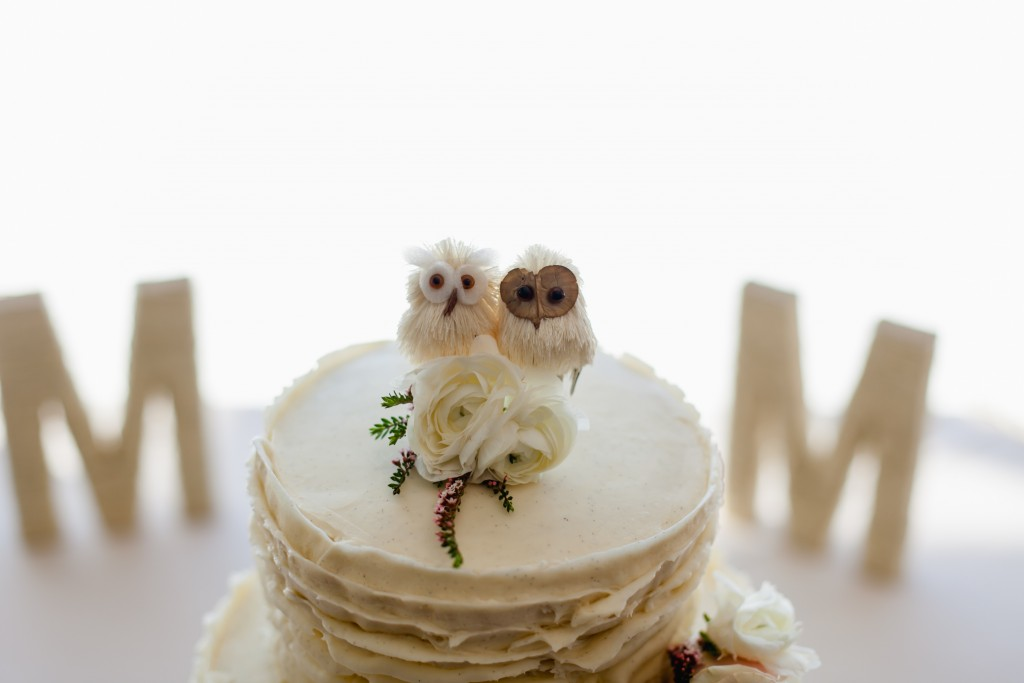 Cake topper owls for a rustic wedding cake